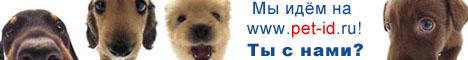Микрочипирование животных. Национальная база данных электронной идентификации